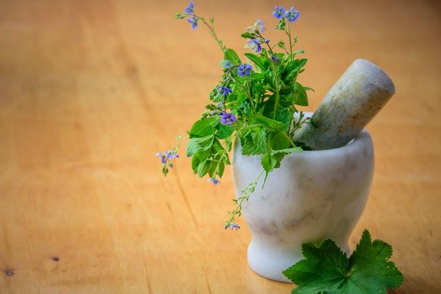 kuchnia rośliny